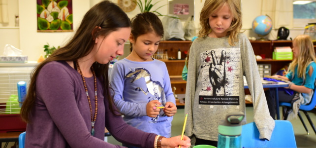 Why I Want To Be A Montessori Guide